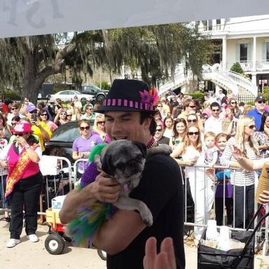 Ian-Mardi-Paws-Dog-Parade-in-Louisiana-28